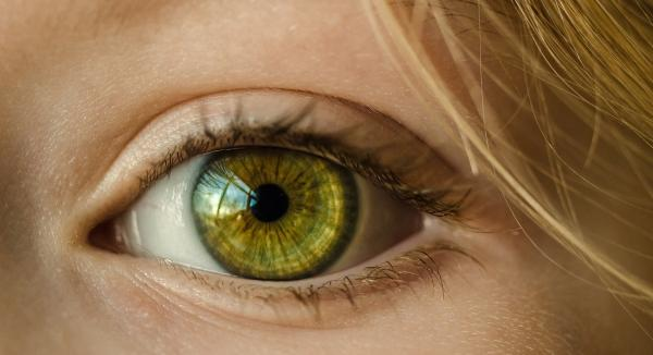 Eye Health Supplements Explained