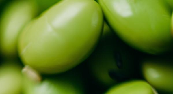 """Jo Gamble on Phytoestrogens: """"There's So Much More to the Picture Than Just Soya"""""""