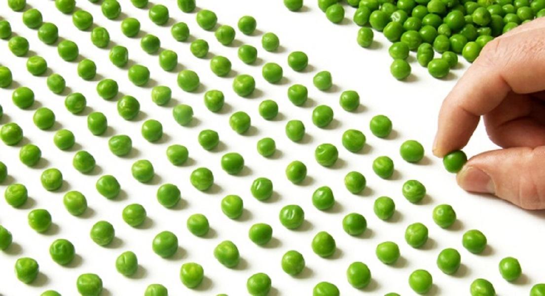 Can Nutrition help OCD?