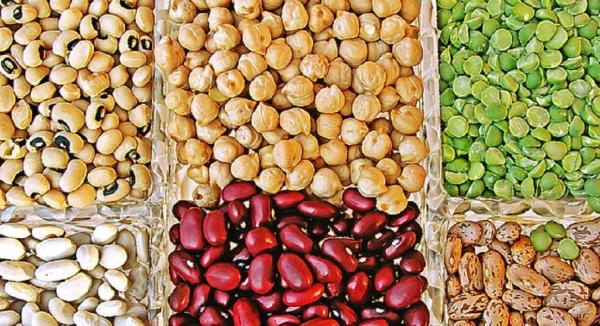 Plant-Based Eating - Protein-Rich Vegetables