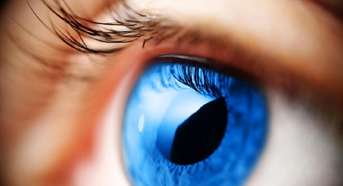 Common Eye Conditions & Key Nutrients to Help