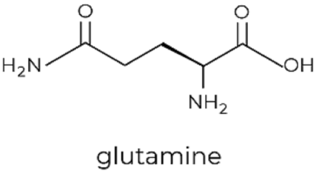 The Vital Role of L-Glutamine in Leaky Gut Syndrome Intervention