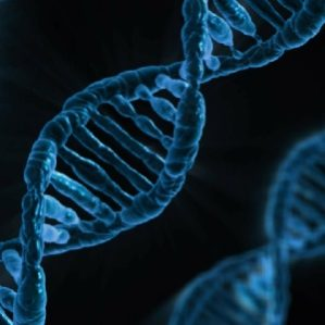 An Expert's Guide to Genetic Testing