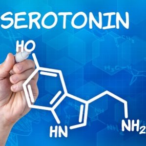What Does Serotonin Actually Do?