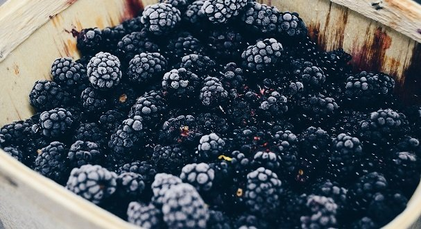 3 Ways Blackberries Improve Gut Health - Nutri Advanced