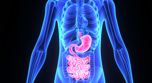 New Microbiome Support Is Both Antimicrobial and Supportive of Beneficial Bacteria Populations