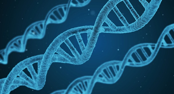 Genetic Testing: An Overview of Types, Providers & Considerations