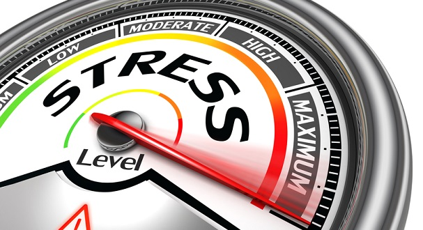 Adrenal Stress : An Interview with Sue Camp at Genova Diagnostics