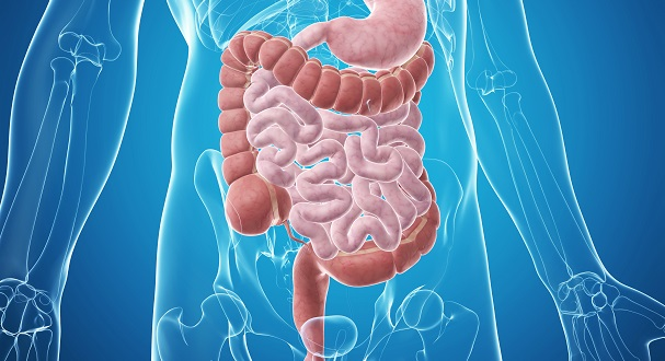 How Functional Medicine Can Fix Your Gut